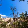 Devil's Punchbowl Natural Area