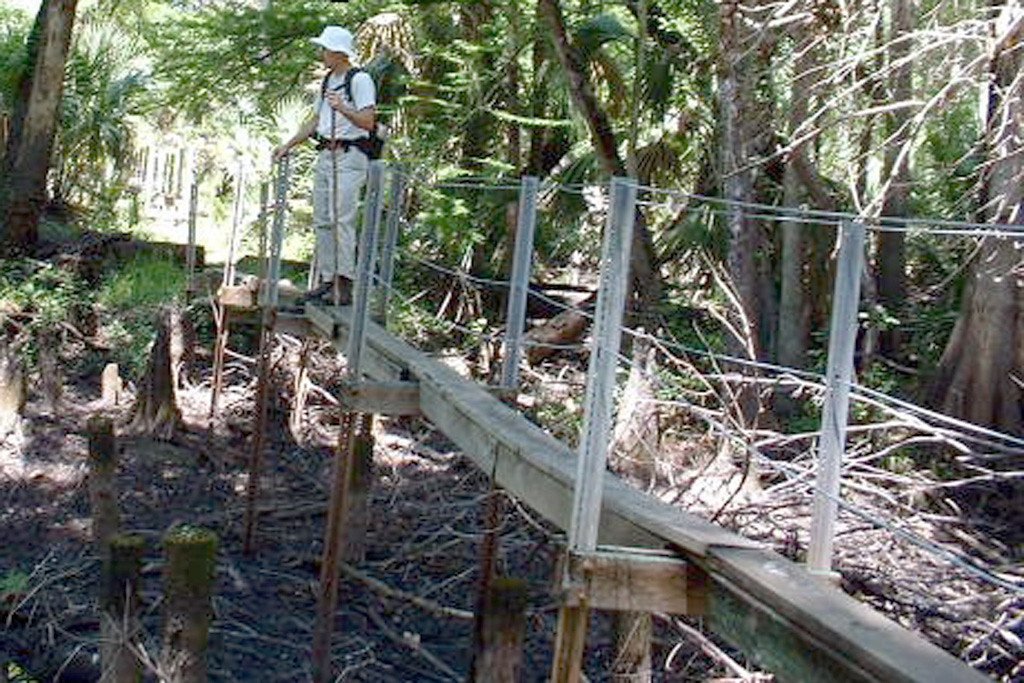 This is a May, 2006, photo of the old bridges. They were only one board wide and had loose, sagging wires for hand rails. Safety has increased with the new bridges, but the excitement of crossing is gone. That's me up there, standing above a very dry Crabgrass Creek. Photo by Tom Choma.