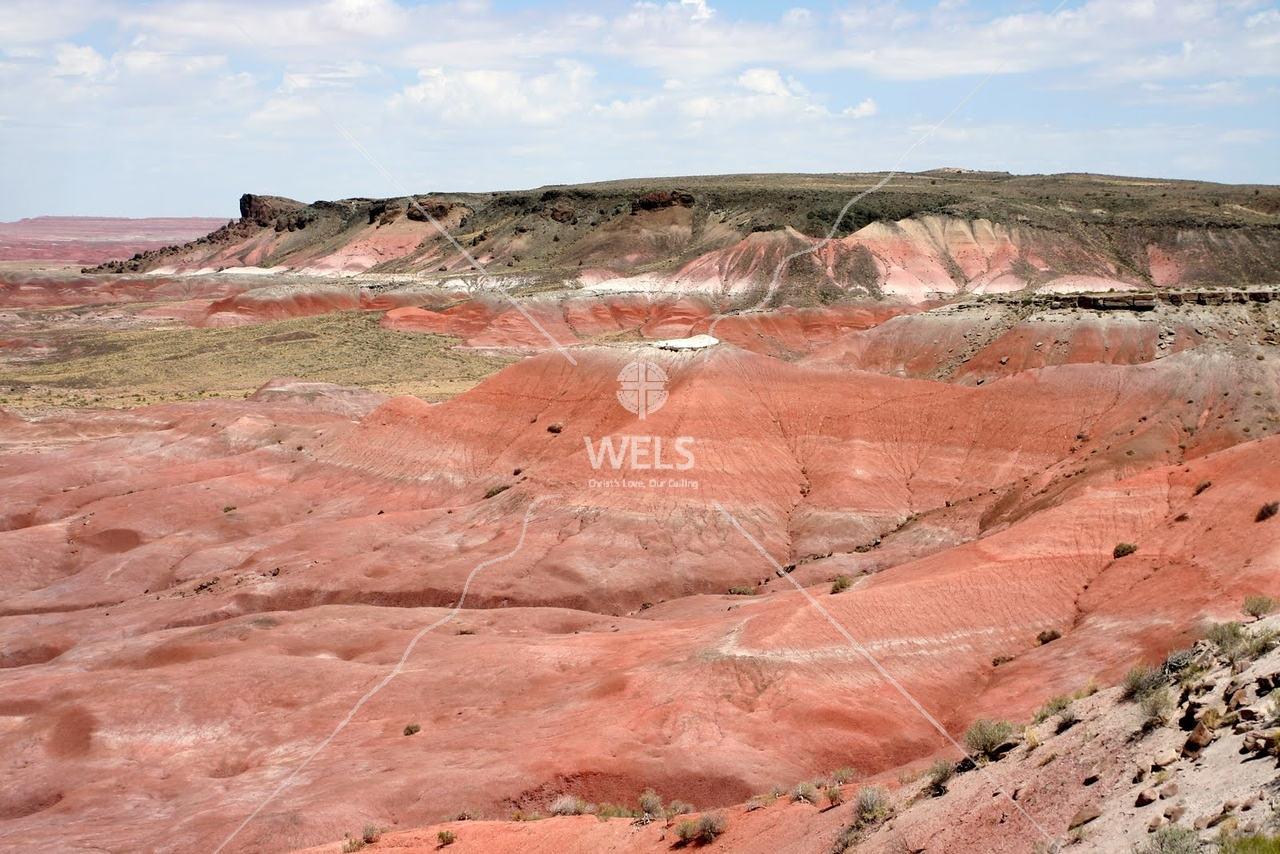 First view of the Painted Desert in Grand Canyon by tluecke