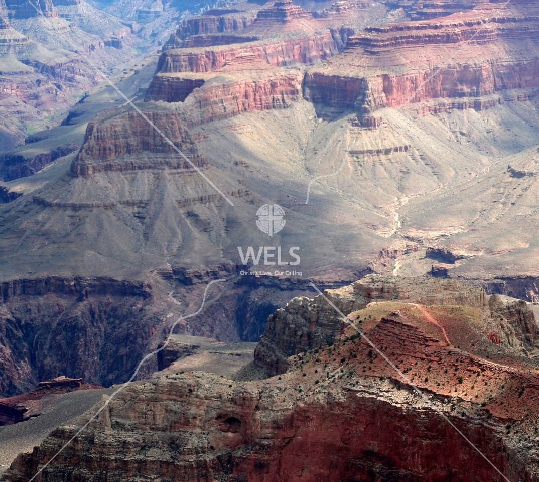 Impressive contrasting colors of the Grand Canyon by tluecke