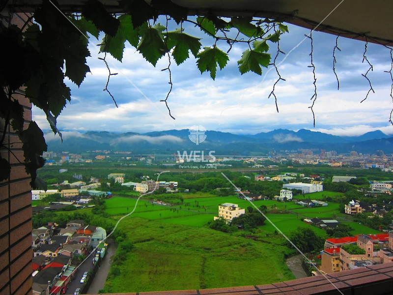 A view of the rice fields and foothills on the east side of Taichung, Taiwan by kstellick