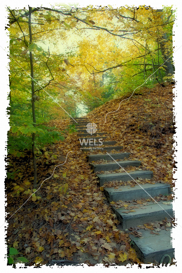 Fall Stairway by mspriggs