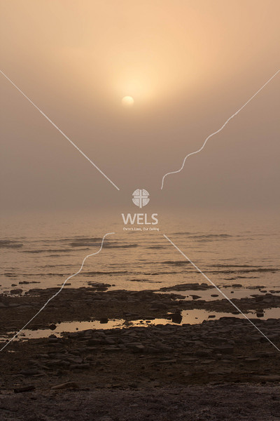 Fog Setting Under the Sun by mspriggs