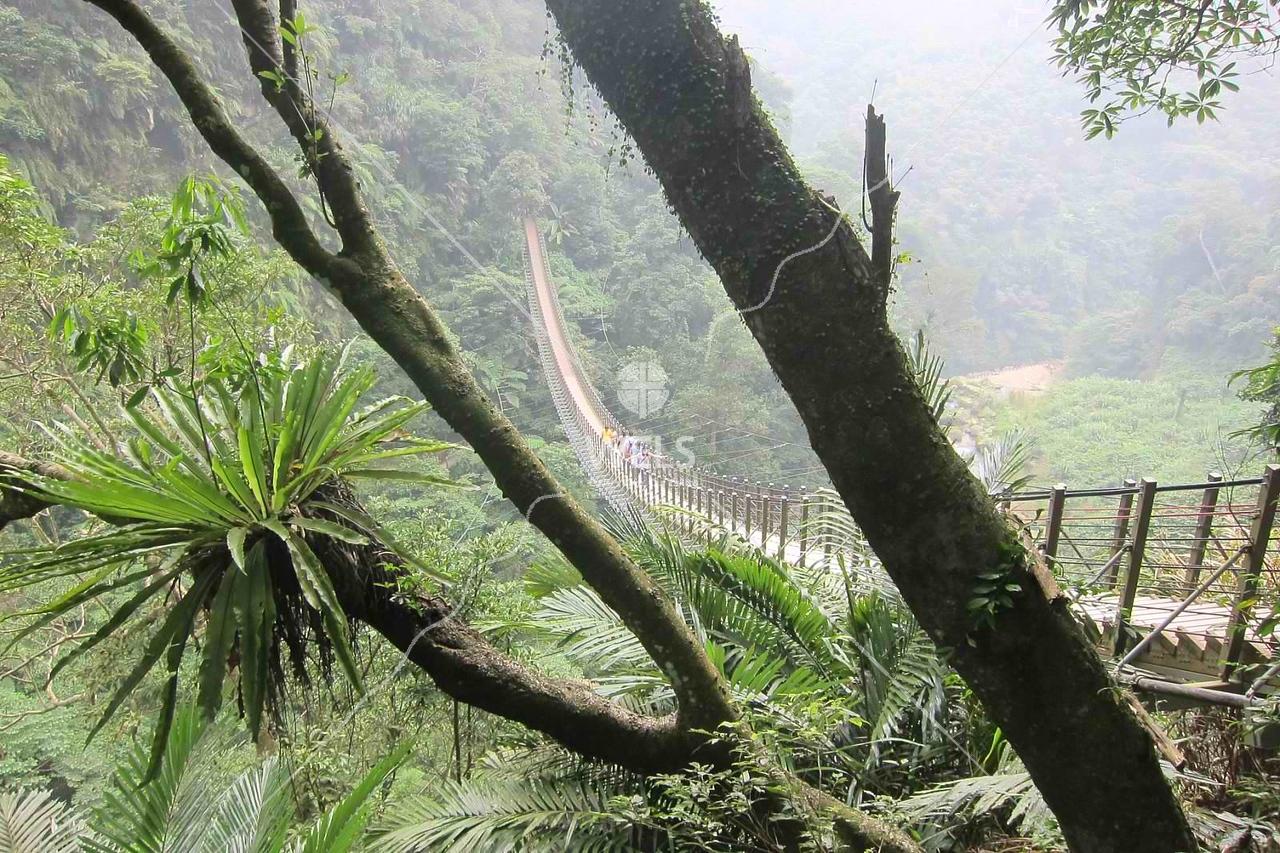 Stairs to Heaven in central Taiwan  by kstellick