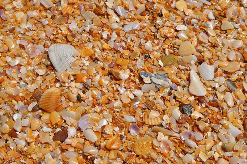 Beach by lpappalardo