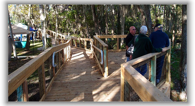 Boardwalk at Three Sisters Spring
