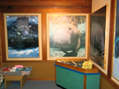 New Educational Exhibits in Crystal River National Wildlife Refuge