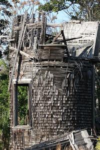 Cumberland_Island_01-2007_0014