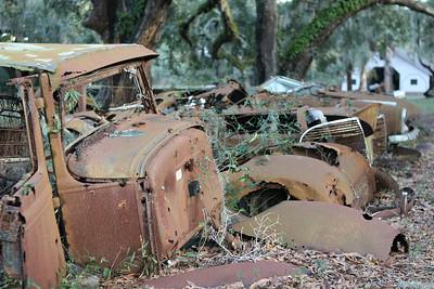 Cumberland_Island_01-2007_0027