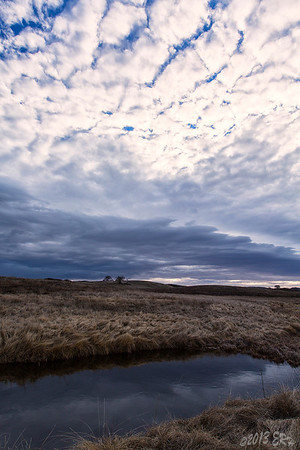 Interesting clouds over the eastern section of the park just after dawn.  This is one of the pools along Stonewall Creek.  Very dynamic lighting today.