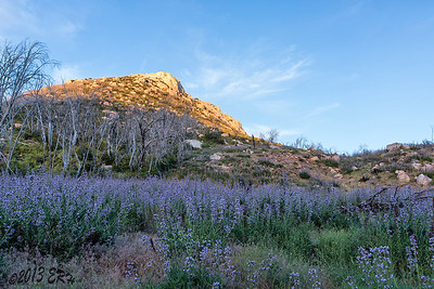 Stonewall Peak highlighted by the setting sun.