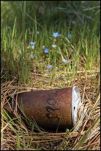 Someone's tasty beverage from years past amid the wildflowers.  I found this while looking for a shady patch to enjoy a quick lunch and not so quick nap.