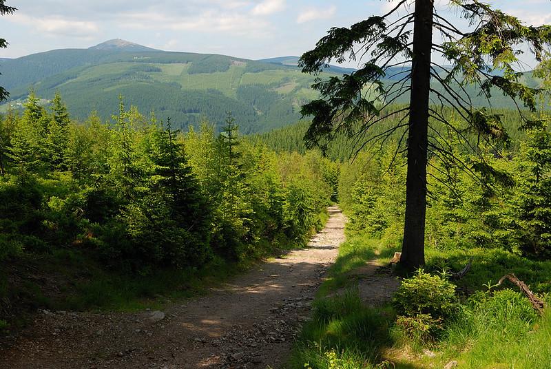 "Taken at Latitude\Longitude:50.674825\15.758983 Near Velká Úpa Královéhradecký Kraj Czech Republic <a href=""http:\\www.geonames.org\maps\google_50.674825_15.758983.html""> (Map link)"