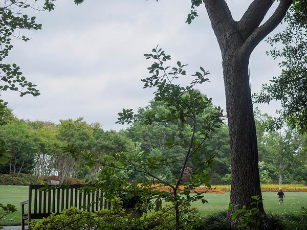 Dallas Arboretum, May 7, 2014