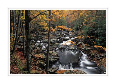 landscapes_FallStream3