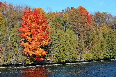 Along the Trent river.