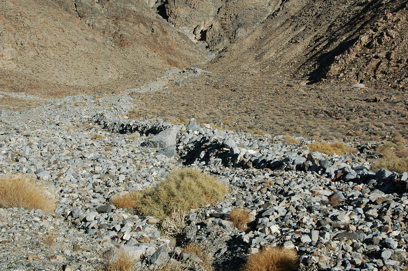 """Levee"" deposits of a recent cohesionless debris flow on Dolomite Fan (Owens Valley)"