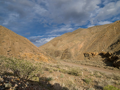 Landscape at Wild Rose Canyon
