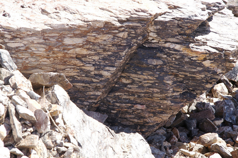 Precambrian rocks, the oldest on Earth, have been<br /> distorted under enormous pressure