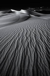 20100412_DV_Dunes_114