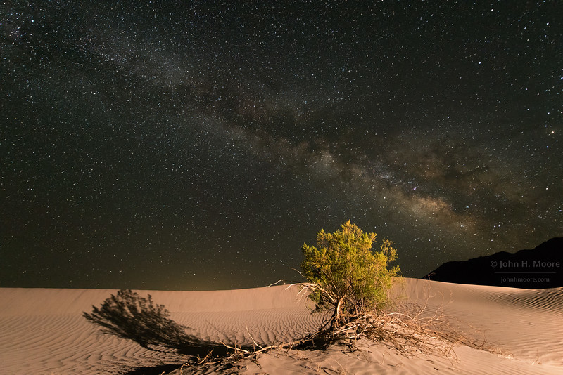 The Milky Way arches over brush growing in the sand dunes at Stovepipe Wells, Death Valley National Park.  Mesquite Flat Sand Dunes.