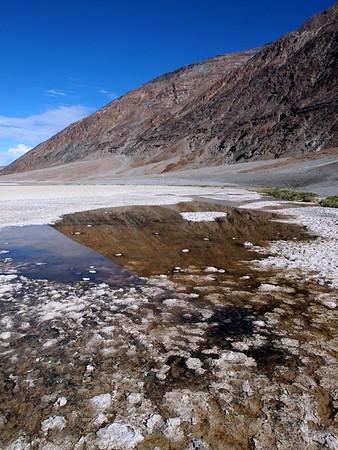 Bad Water, DVNP 2015