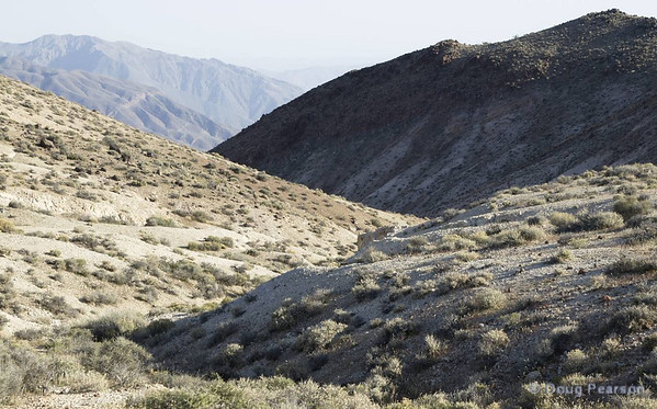 A view in Death Valley NP