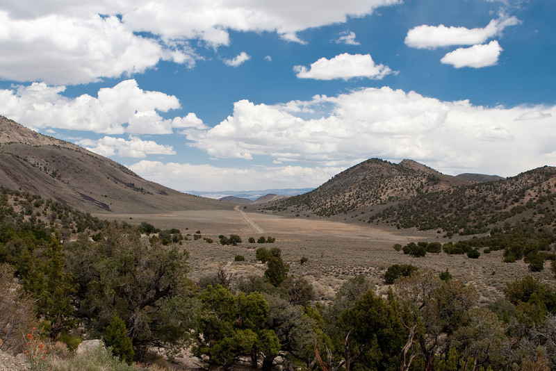 This is a picture of Little Cowhorn Valley.  The Death Valley Road runs through it on the way from Big Pine to Death Valley.