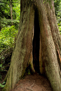 Deception Pass 05-24-2014-22
