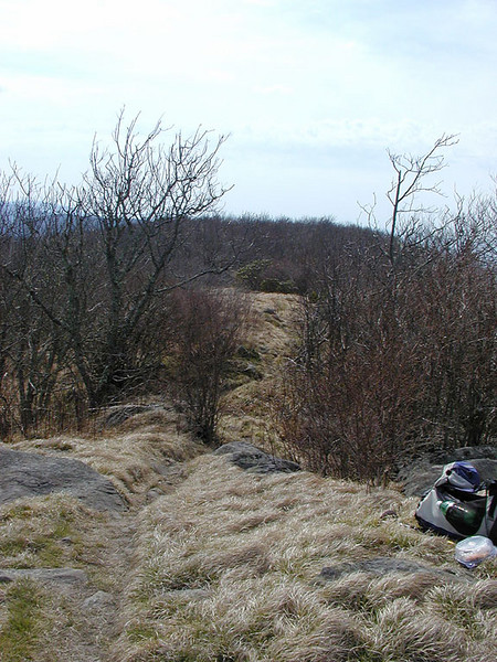 The A.T. goes out over Thunderhead from here.  <br /> <br /> GSMNP April 2007