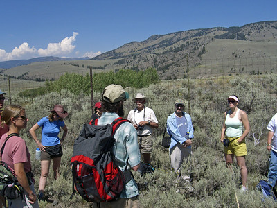 "Nathan Varley sharing examples of ""trophic cascade"" in Lamar Valley"