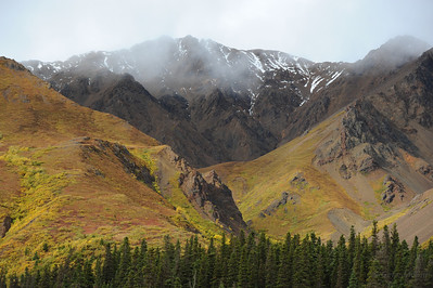 Autumn, Denali National Park