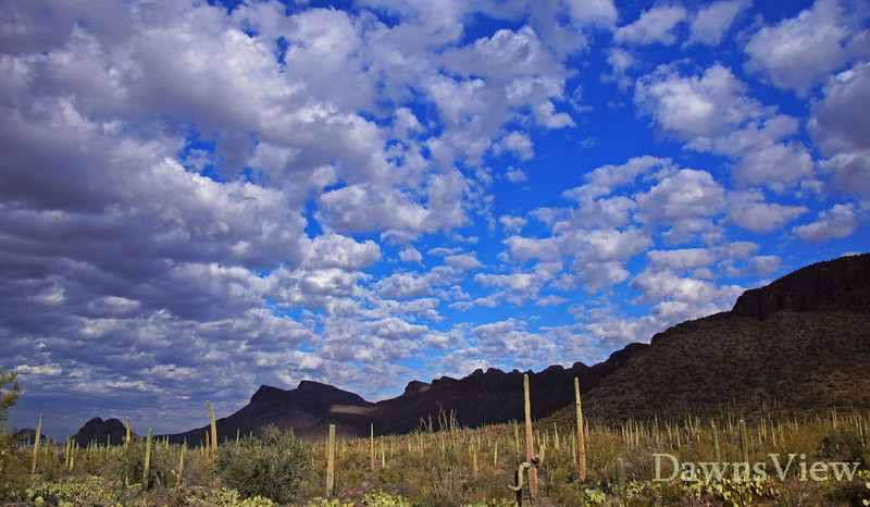 Wonderful cloud cover creates a great photo, Tucson, AZ