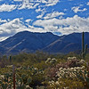 Snow on Wasson Peak, Tucson, Arizona Jan 9,2013