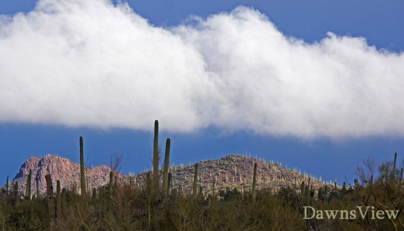 December 18, 2011 Rainy day with lots of clouds to photograph<br /> Tucson, AZ