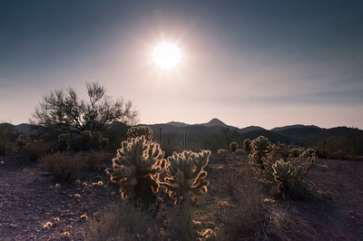 Beginning shoot of the solar eclipse seen in the Arizona desert.