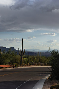 Drive off the mountain in the Sonoran Desert