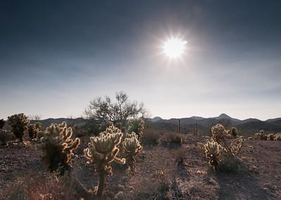Beginning of the solar eclipse seen in the Arizona desert outside of Phoenix.