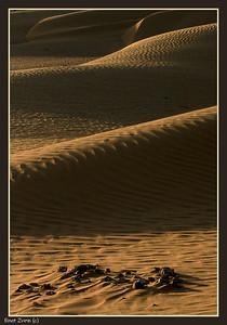 Kesuy Dunes, Southern Israel