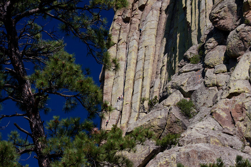 Devils Tower 7885<br /> William Rogers and Willard ripley, local ranchers, are the first known individuals to climb Devils Tower on July 4, 1893. Today hundreds of climbers go up Devils Tower, 1280 feet high.
