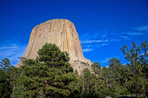 Devils Tower 7798<br /> In 1906 Devils Tower became the First National Monument. Located in Wyoming. Devils Tower is also a religious site for the American Indians.  It rises 1,280 feet above the valley floor.