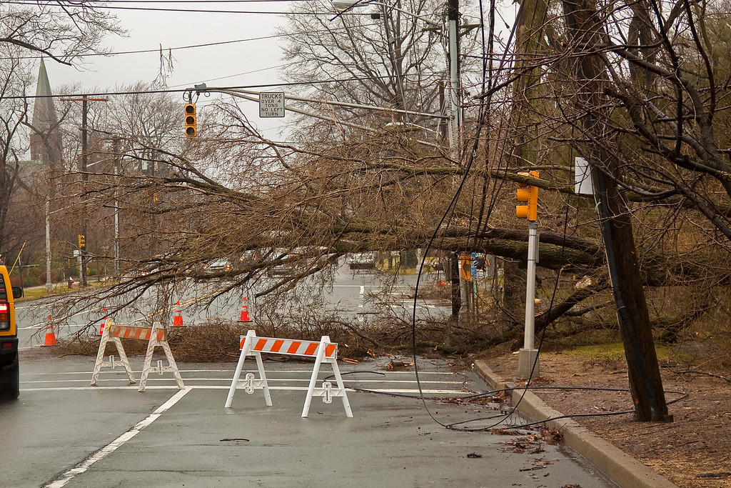 Downed trees block west bound Palisade Avenue and down power lines.  Englewood, NJ