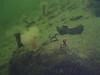 2007-04-01. Boris, skatten och vraket. / Boris, the treasure and the wreck. Hällebäck, Gullmarsfjorden. [SWE].