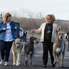 Salt City Cluster Spring Dog Show - Syracuse,NY