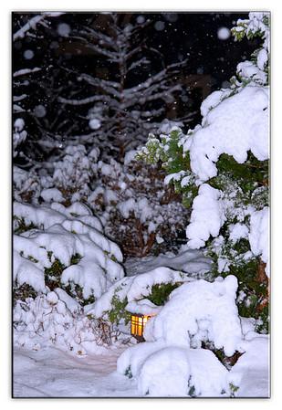 snow1454