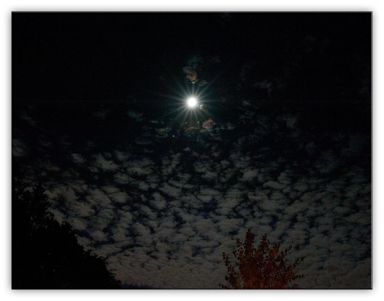 moon9594