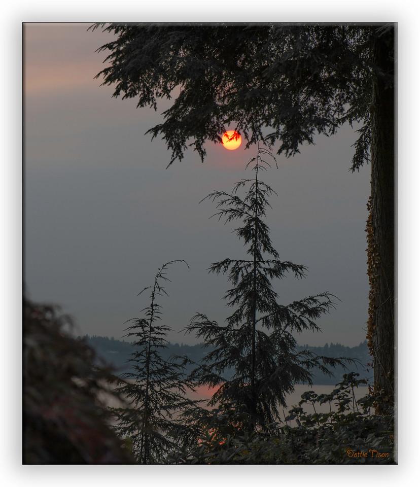 sunrise6936
