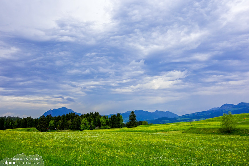 Dance of the sky. Near Tiefenbach, Allgäu.
