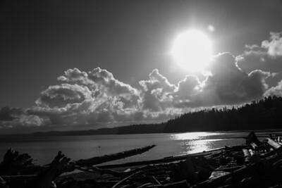 Driftwood Shores 18
