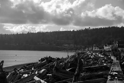 Driftwood Shores 7